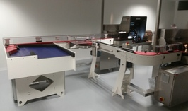Installation of an inspection line on client's site